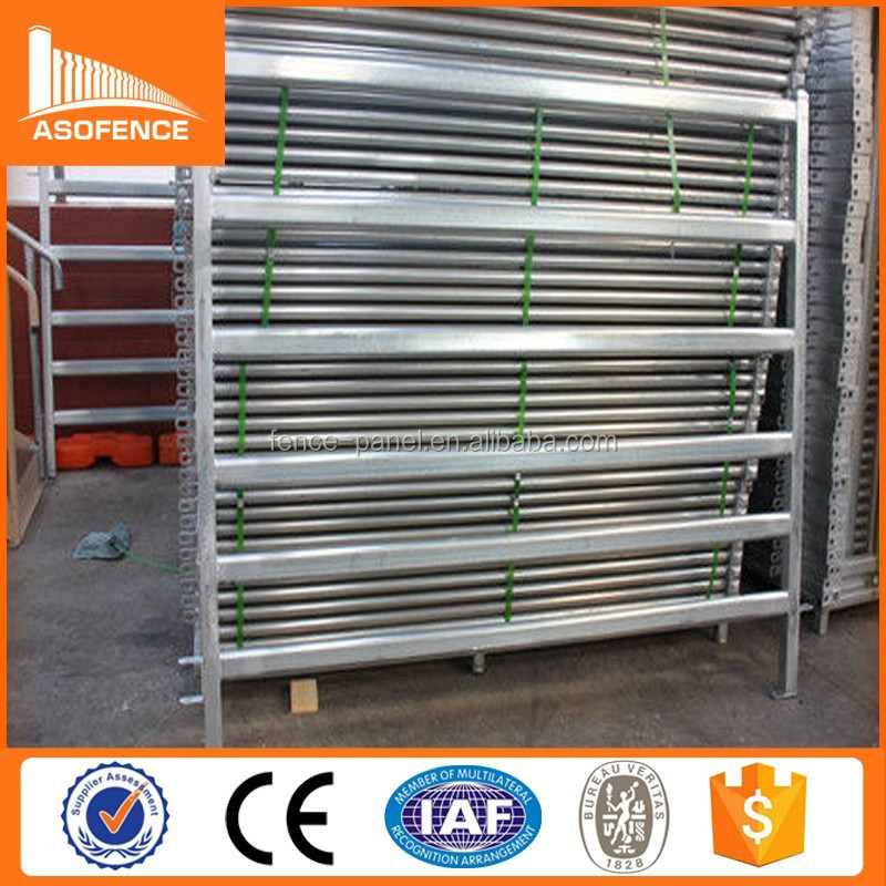 Australia Standard cattle yard panel 6 rail galvanized steel / cheap cattle portable yard fence