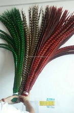 Hot sale Carnival Feathers Dyed Colorful Reeves Pheasant Tail Feathers