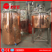 CE approved commercial red copper brewing boiler
