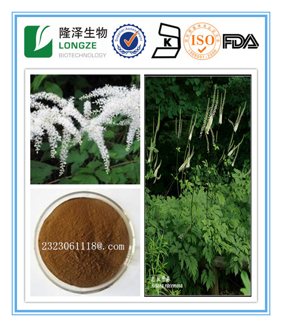 Free sample 2.5-8% Triterpene Saponins Black Cohosh Extract