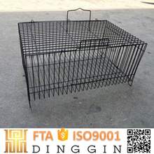 1000 layer chickens farm Chinese bird cage