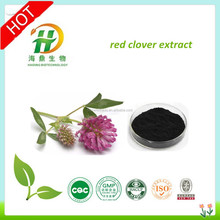 High Quality Red Clover Extract Isoflavones 40%