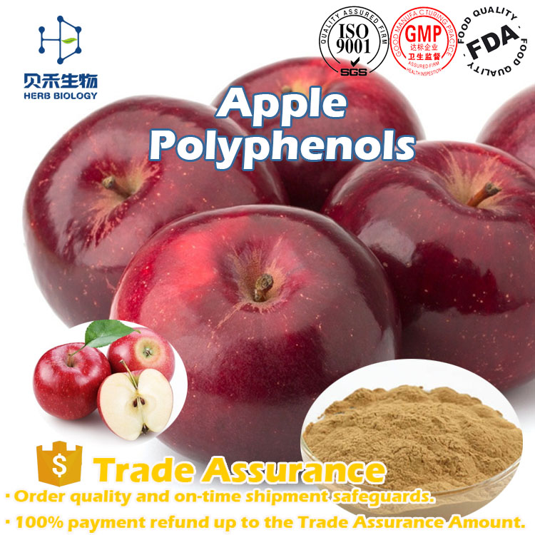 Factory supply Apple extract Polyphenols/Apple Flavor Extract/ISO certificate Apple extract powder