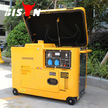 BISON(CHINA) BS7500DSEC 6KW 6KVA 220V Factory Price Portable Battery Powered Electric Generator