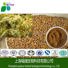 Natural herb extract Chinese Dodder Seed Extract / Semen Cuscutae extract / 5:1