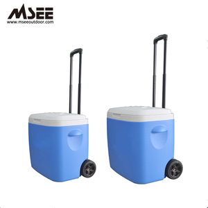 8L 28L 38l Wheeled Plastic Cooler Box For Vaccine,Beer,Food,Fishing,Bbq, Thermos Ice Chest Cooler