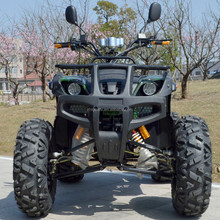 Adult Electric ATV 1000w/1200w/1500w/1800w/3000w /3600w
