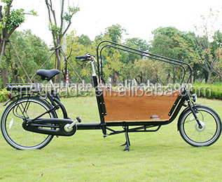Classic family used good quality electric Cargo Bike