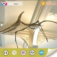 Pterosaur skeleton model for exhibition and jurassic park