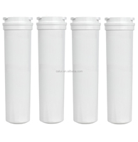 Compatible for Fisher & Paykel 836848 836860 WF296 AMANA 67003662 refrigerator water filter