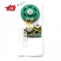 Electronic component musical sound chip for greeting card,custom mini voice recorder sound chip