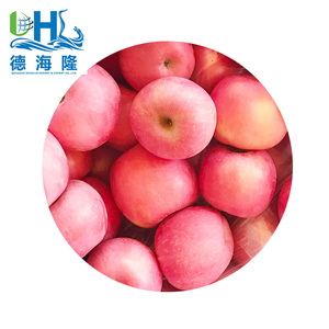 Top grade Red Fuji apple from China