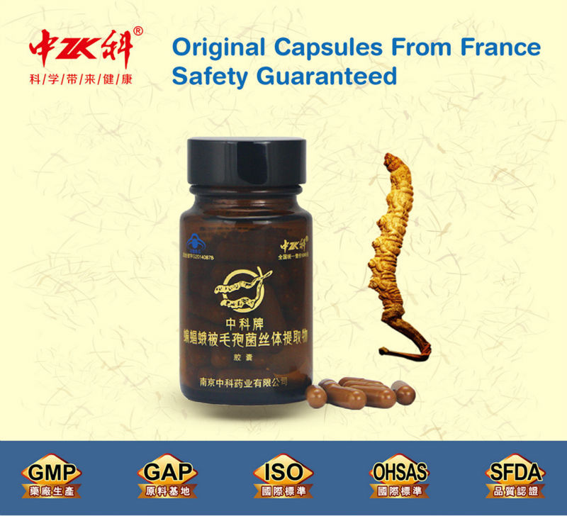 Health Food Supplement dried cordyceps with GMP Factory