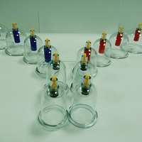 Chinese Medical Vacuum Cupping Hijama Cups