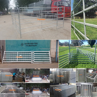Galvanized welded pipe livestock cattle used corral fence panels for horse,durable 6 or 5 bar steel temporary metal corral fence