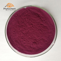 Wholesale High quality Mulberry fruit juice extract powder