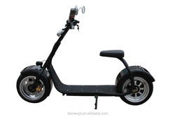 New Arriver big two wheels Popular city scooter 1000W long range Electric Scooter, Electric motorcycle