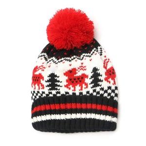 121360aa481 Fashion Acrylic Wool Pompom Beanie Hat Jacquard Winter Skull Cap