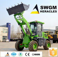 small payloader machine