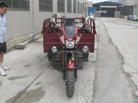 China Manufacture Pedal Cargo Tricycle 200CC Boost Rear Axle