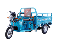 Gasoline engine Motorized Three Wheel Cargo Tricycle