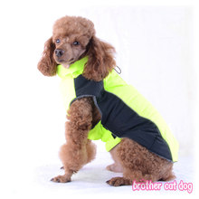 Designer big dog clothes