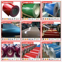 Real Estate Color Coated Steel Coil