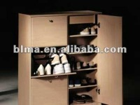 Living room furniture hangers& shoe cabinet