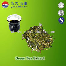 Natural green tea extract ISO 22000 certificated with polyphenol
