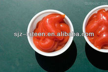 tomato ketchup plant wholesale
