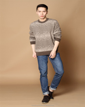 Men's Jacquard Design Cashmere sweater round neck pullover knit sweater plain sweater
