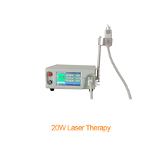 Medical Therapy Diode Laser for Pain Relief