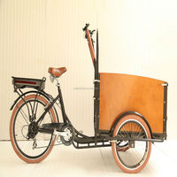 CE danish best price cargo bike electric tricycle with lithium battery for family