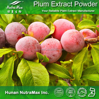 Concentrate Plum Juice Powder for health food (ISO.Halal.Kosher)