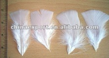 Duck Feather, White Feather, Used Feather Pillows For Sale