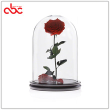 Wholesale Preserved Rose In Glass Dome D20xH30cm (D7.87xH11.81 inches)