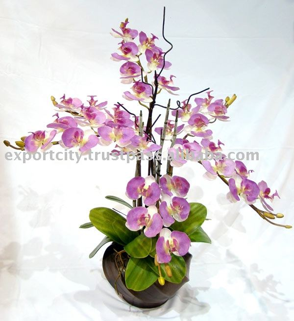 Artificial flowers plant, setting and stem phalaen ( phalaenopsis orchid)