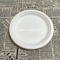 Wholesale carton cheap plain white ceramic plate restaurant tableware Bagasse tableware plate