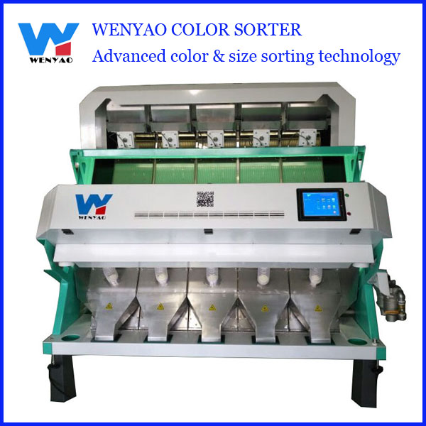 Best selling coriander vegetable color sorting machine