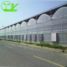 Agricultural Multispan Hot Galvanized Frame Plastic Film Green House