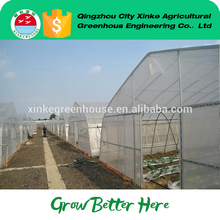 Cheap greenhouse rainforced plastic of CE and ISO9001 standard