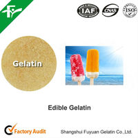 Hot Sale Halal Edible Gelatin Powder