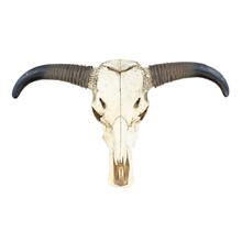 Realistic Life Size Cow Skull Wall Mount Decor Resin Bull Heads