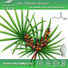 Top Quality Saw Palmetto Fruit Extract Powder 4:1 5:1 10:1 20:1