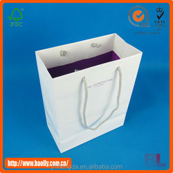 Custom paper gift bag from China supplier