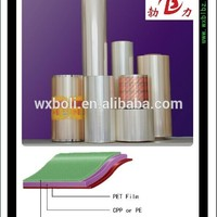 Factory Hot Sales Pet Film As