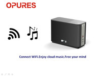 Wholesale 20W Bass Subwoofer Wireless WiFi Professional PA Sound