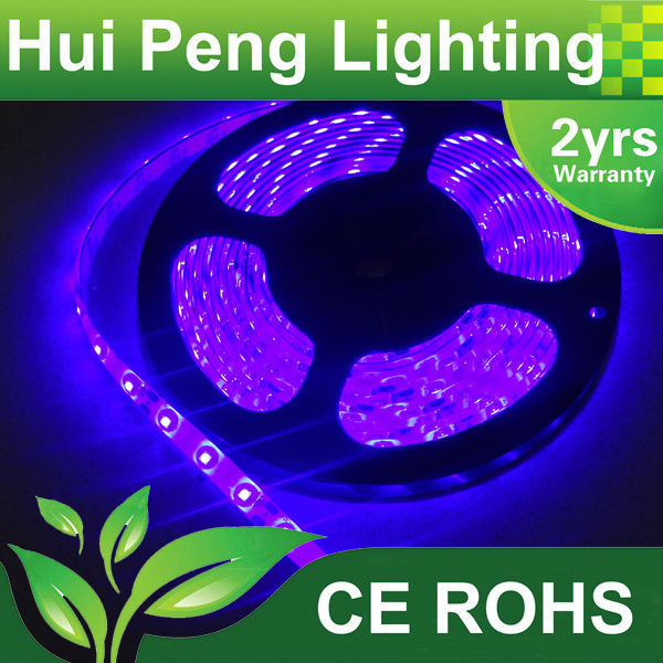 High brightness 3528 led ribbon wholesale glitter color changing led christmas lights