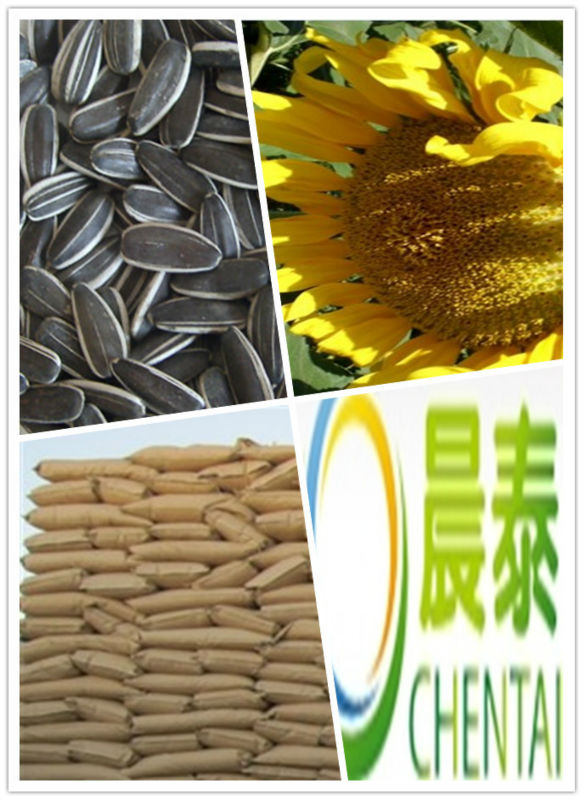Original Inner Mongolia bakery Grade Hulled Sunflower Seeds 8mm