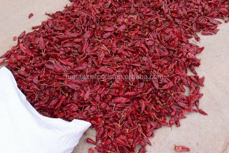 hot dried Chilli